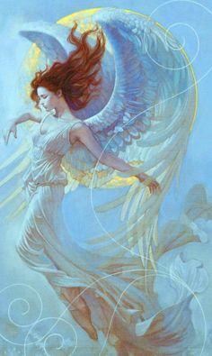 Fly in Dreams