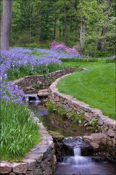 Stream water feature with purple Lily border.
