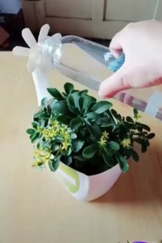 DIY Plastic Bottles Modern is part of Diy plastic bottle - DIY Plastic Bottles Creative ideas about plastic bottles recycling Diy Home Crafts, Diy Arts And Crafts, Creative Crafts, Creative Ideas, Plastic Bottle Crafts, Recycle Plastic Bottles, Easy Diy Room Decor, Recycled Bottles, Recycled Crafts