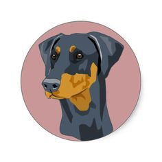 The Doberman Pinscher is among the most popular breed of dogs in the world. Known for its intelligence and loyalty, the Pinscher is both a police- favorite White Doberman Pinscher, Doberman Mix, Blue Doberman, Doberman Training, Manchester Terrier, Dog Shampoo, Weimaraner, Dog Show, Puppies