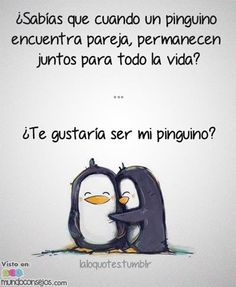 Los pinguinos, esos animalitos aparte de bonitos son FIELES. Al encontrar su pareja no la dejan ir, se vuelven uno solo, por siempre :), ¡qué ejemplo para
