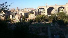 El Palatí és un dels set turon de Roma; entre el Foro Romà i el Circ Màxim. La mitologia fa del Palatí el lloc on vivia Luperca, la lloba que va alletar Ròmul i Rem. Històricament, en aquest turó hi havia el temple de la tríada palatina. Va ser fundat pel rei Tarquini Prisc i es considerava el més destacat de la ciutat.  Avui en dia en queden algunes restes, com les domus Flàvia i Augustana i la casa de Lívia, i el jardí renaixentista anomenat Orti Farnesiani.