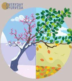 Rethinking the Seasons and Ayurveda