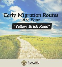 """Early Migration Routes are Your """"Yellow Brick Road"""" - Great article about tracking your American ancestors and dates by road openings."""