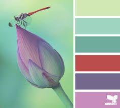 photos color nature - Pesquisa Google