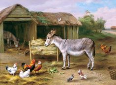 Original Painting by Edgar Hunt - Ruler of the Roost from London Gallery Burlington Paintings specialising in and Century British and European Oil Paintings Animal Paintings, Animal Drawings, Art Paintings, Donkey Drawing, Horse Artwork, Pig Art, Farm Art, Funny Animal Videos, Pictures To Draw