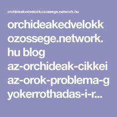 orchideakedvelokkozossege.network.hu blog az-orchideak-cikkei az-orok-problema-gyokerrothadas-i-resz Blog, Blogging