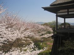 Ishiyama-dera temple.