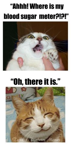 Type 1 Diabetes Memes: Photo.....That is definitely how you look when this happens!