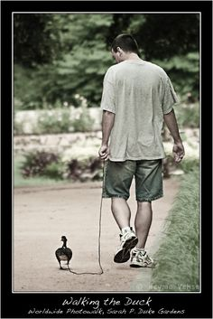 Yes, I will have a pet duck & Yes, I will walk it on a leash @Heather Shaver