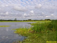 Lagoa da Salgueira, Quiaios
