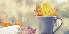 Un otoño de libros III