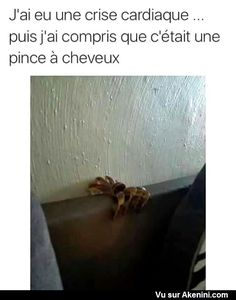Photos Fun Drôles Divers - Funny miscellaneous Pictures