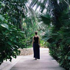 Diving, Wander, Paradise, Luxury, Instagram, Scuba Diving, Heaven