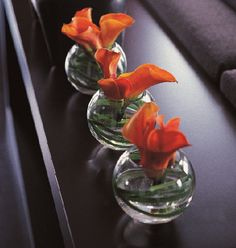 A dark wenge console behind a charcoal-covered sofa is the perfect palce to introduce spot colour - as with these three goldfish bowls of arum lilies with twisted stems. A tribal headrest at the far end - being of a similar height - balances the glass and flowers.   http://www.kellyhoppen.com/shop-by-type/books-and-pictures/kelly-hoppen-style-the-golden-rules-of-design