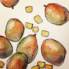 Mango illustration.