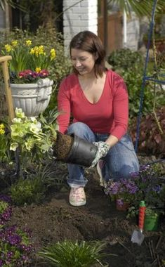 Die prächtigen Christrosen kommen groß raus, wenn der restliche Garten im Winterschlaf liegt. An luftigen, halbschattigen bis schattigen Plätzen fühlen sich Helleborus besonders wohl. Was man sonst noch über die Blütenwunder wissen muss, erfahren Sie in unseren 10 Tipps.