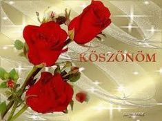 "Képtalálat a következőre: ""köszönöm szépen gif képek"" Love Deeply, Beautiful Roses, Happy New Year, Thankful, Disney Princess, Birthday, Flowers, Image Search, Google"