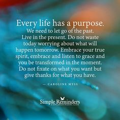 """""""Every life has a purpose. We need to let go of the past. Live in the present. Do not waste today worrying about what will happen tomorrow. Embrace your true spirit, embrace and listen to grace and you be transformed in the moment. Do not fixate on what you want but give thanks for what you have."""" — Caroline Myss #SimpleReminders #SRN @BryantMcGill @JenniYoung_ #quote #purpose #letgo #worry #waste #grace #embrace"""