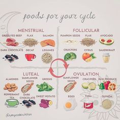 Health And Wellbeing, Health And Nutrition, Health Tips, Health Fitness, Seed Cycling, Pcos Diet, Hormone Balancing, Menstrual Cycle, Health Remedies