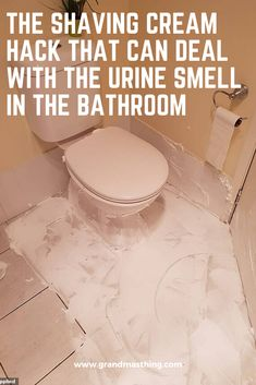 How to Get Rid of the Urine Smell in Your Clean Bathroom ...