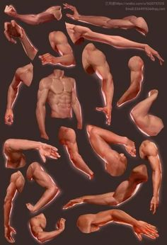 ArtStation – arms, Qi Chen Source by Our Reader Score[Total: 0 Average: Related photos:Reference Guide for Drawing Male MusclesMedical Study Anatomy IdeasAnatomy Skeleton Study DrawingDamensweatjackenBones: Fundamentals of anatomy for physicians Arm Anatomy, Anatomy Poses, Body Anatomy, Anatomy Art, Body Reference Drawing, Anatomy Reference, Art Reference Poses, Hand Reference, Human Anatomy Drawing