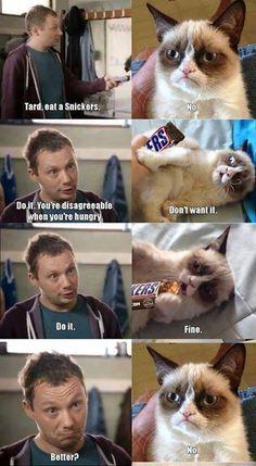 Grmpy cat, funny grumpy cat, grumpy cat pics, grumpy cat meme ...For more memes humor and funny jokes visit www.bestfunnyjokes4u.com/rofl-best-funny-joke-pic/