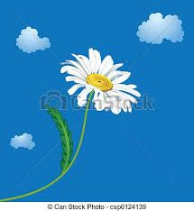 Image result for artist images of ox eyed daisies
