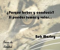 Bob Marley Canciones, Bob Marley Quotes, Milla Verde, Poetry, King, Disney, Amor, Forever Quotes, Sad Movie Quotes