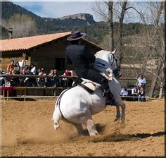 Jinete and Doma Vaquera Riding.  Really like this style of riding