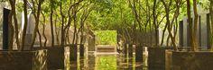GRAND HYATT hongkong garden - Google 搜索