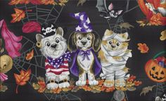Halloween Costume Dogs Pug Witch Puppy Princess by 3dogdesigns, $11.00