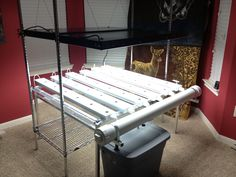 Test hydroponic system with T5 fluorescent lighting system.