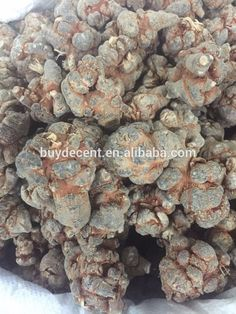 Nature Radix Notoginseng Extract panax notoginseng energy supplement product