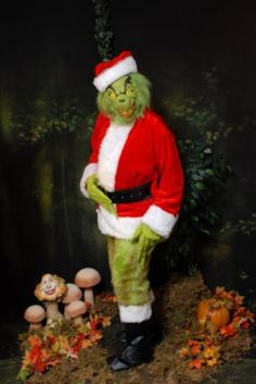 Grinch Costume Idea for Peter