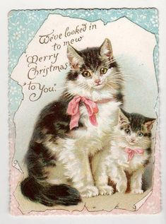 Attractive Victorian 1890s Xmas Card. Cat & Kitten pub'd by Nister. Helena Maguire.