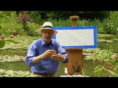 ▶ Monet's Waterlilies - David Dunlop Paints Monet's Waterlilies in Giverny - YouTube