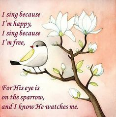 Matthew 6:26 26 Look at the birds of the air; they do not sow or reap or store away in barns, and yet your heavenly Father feeds them. Are you not much more valuable than they?
