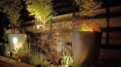 Lights in raised bed
