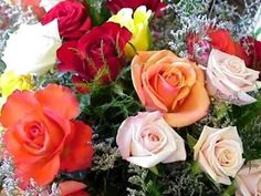 - Ovidiu Komornyik ( Happy Name Day ! All Flowers, Amazing Flowers, Beautiful Roses, Pretty Flowers, Flowers Pics, Advent, Happy Name Day, Montage Photo, Colorful Roses