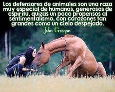 Defensores animales