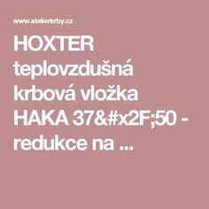 HOXTER teplovzdušná krbová vložka HAKA 37/50 - redukce na ...