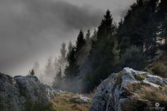Monte Grappa: brume invernali
