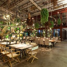 Thai design agency Hypothesis reused elements including scaffolding and tree roots to transform an abandoned warehouse into a Bangkok restaurant
