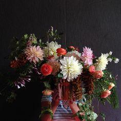 bowsandarrowsflowers's photo on Instagram