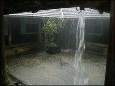 Monsoon – Kerala   Raxa Collective