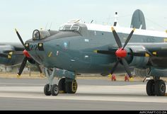 Schackleton by John Kennekam Navy Aircraft, Ww2 Aircraft, Aircraft Pictures, Military Jets, Military Aircraft, Avro Shackleton, South African Air Force, Army Day, Old Planes