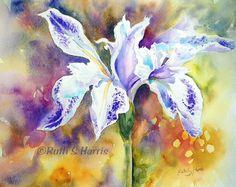 Original Watercolor Purple Pond Iris Painting by rsharts on Etsy, $120.00