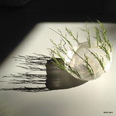 Seidenlicht-Schalen - Feltro