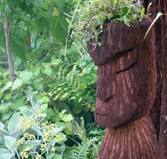 The ferns were carefully selected and blessed by Maori elders. The ferns were carefully selected and Garden Crafts, Garden Projects, Garden Ideas, Tree Fern, Head Planters, Garden Show, Chelsea Flower, Green Man, Tropical Garden